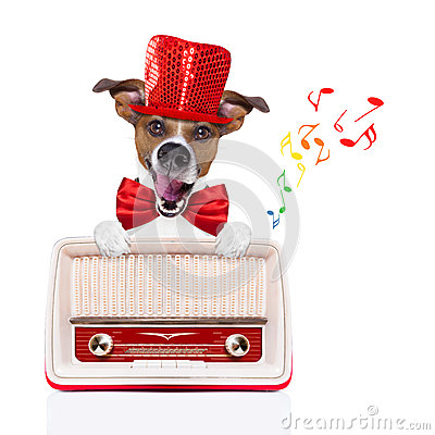 Free Dog Listening Radio Music Stock Photography - 65905802