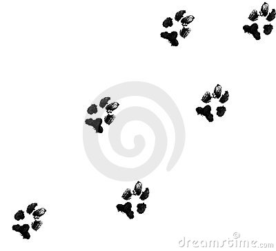 Free Dog Paw Prints Royalty Free Stock Photos - 4001328