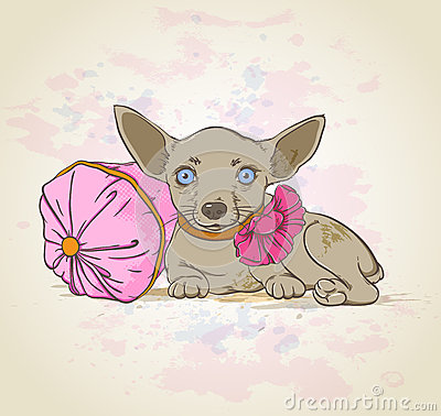 Dog on pink pillow