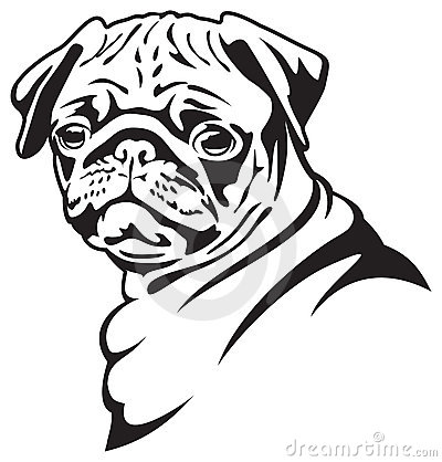 Dog. Pug