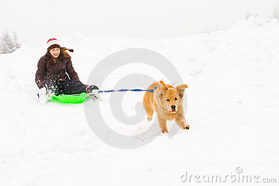 Dog pulling a happy kid on a snow sled