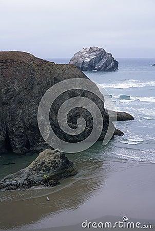Free Dog Rock Royalty Free Stock Image - 13136546