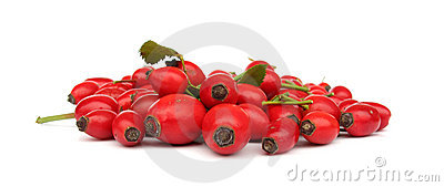 Dog rose hip