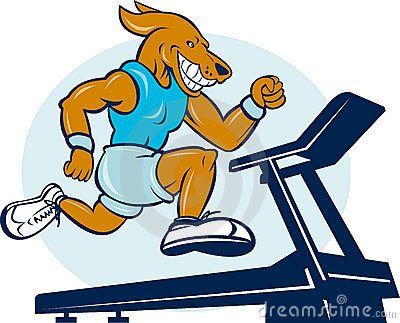 Dog running jogging tread mill