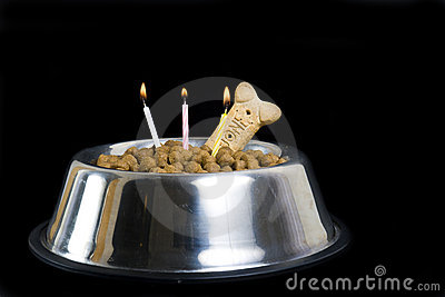 Dog s birthday cake