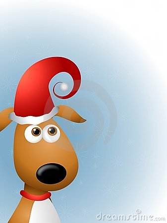 Dog in Santa Claus Hat