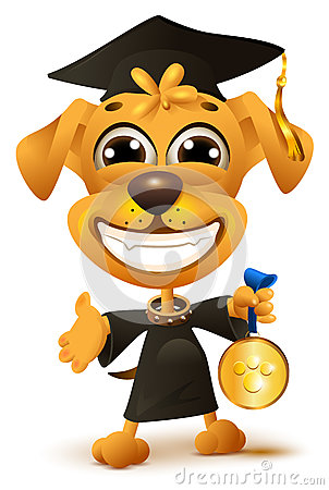 Free Dog School Graduation. Yellow Puppy In Black Robe Holds Reward Stock Photo - 89383920