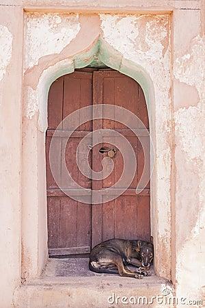 Free Dog Sleeping On A Door Step Royalty Free Stock Photos - 46604498