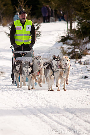 Dog sleigh racing Editorial Photography