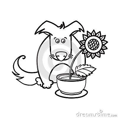 Dog and sunflower
