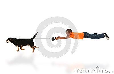 Dog Taking Happy Handsome Black Boy Child for Walk