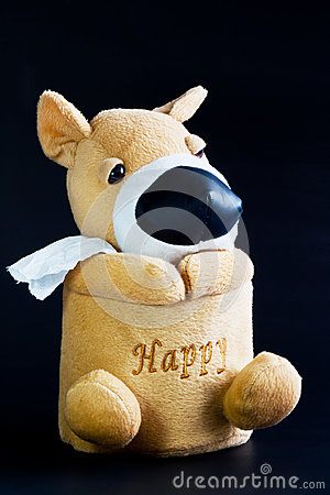 Dog with Tissue paper roll.