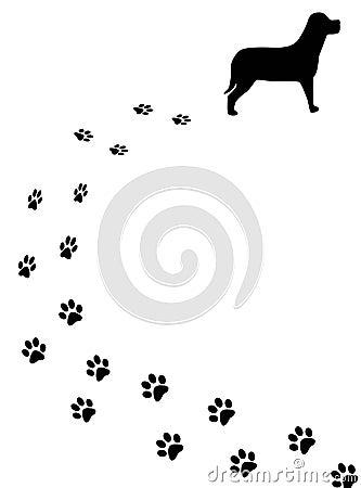 Dog and tracks