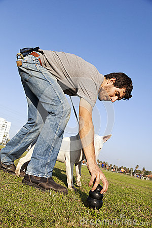 Trainer Placing Dog Chew Toy for Bull-Terier at Park