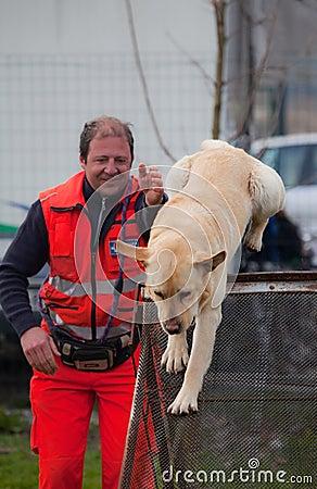 Free Dog Training Stock Image - 24292651