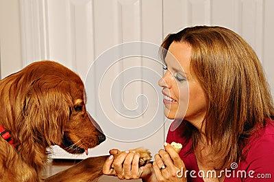 Dog training woman teaching dog to shake hands