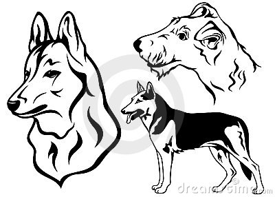 Dog vector set