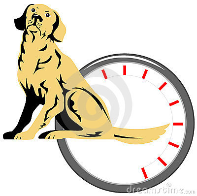 Dog with wag-o-meter