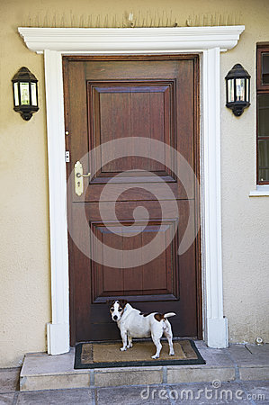 Free Dog Waiting At The Front Door Royalty Free Stock Image - 53990106