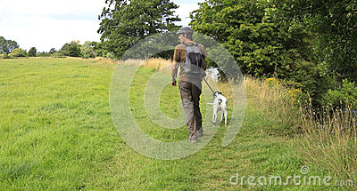 Dog walk in field
