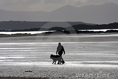 Dog walker on the beach