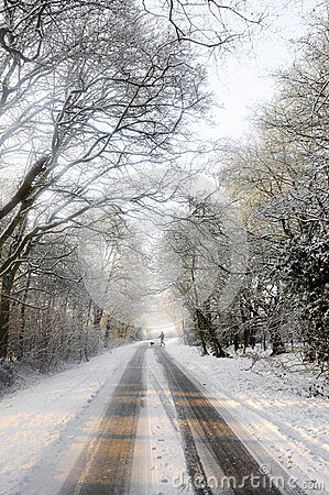 Free Dog Walker Crosses Snow Covered Country Lane Stock Photo - 33806320
