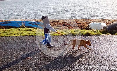Dog Walking!