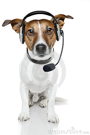 Free Dog With Headset Royalty Free Stock Photo - 23515735