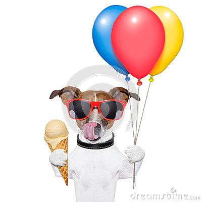 Free Dog With Ice Cream Royalty Free Stock Photo - 28880225
