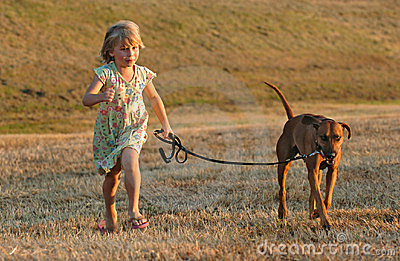 Doggy fun running