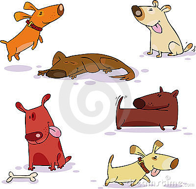 Free Doggy Set Royalty Free Stock Photography - 11224207