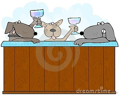 Dogs In A Hot Tub
