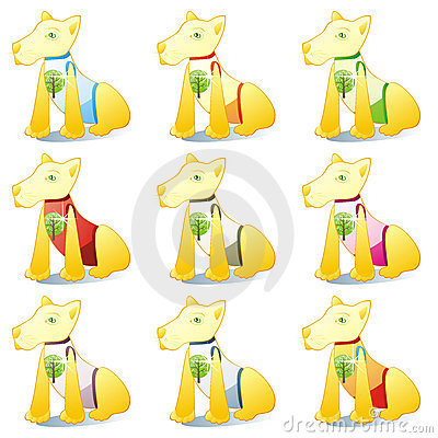 Dogs in pet clothing set