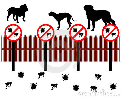 Dogs protect against ticks and fleas