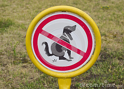 dogs to shit on the lawn.
