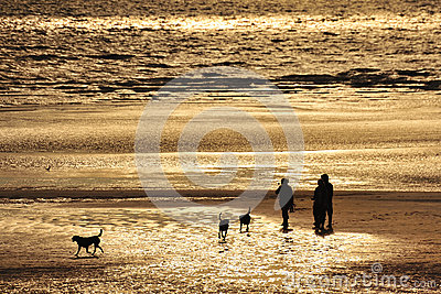 Dogwalkers silhouette