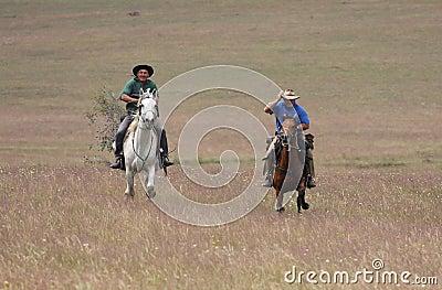 Dois cavalos de equitação dos homens na velocidade