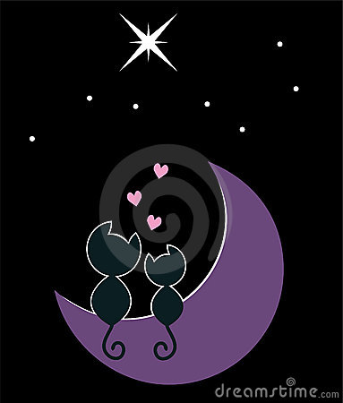 Dois gatos na lua