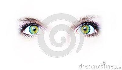 Dois olhos verdes