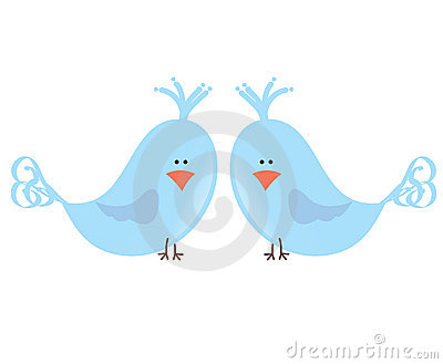 Dois pássaros do amor