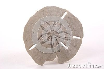 Dolar piasku