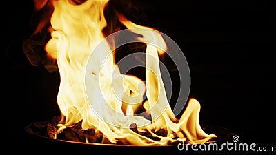 Dolewanie węgla drzewnego zapalniczki fluid w grilla grilla ogienia Zwolnione tempo strzelający na Czerwonej kamerze zbiory