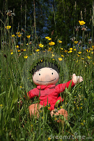 Doll in nature