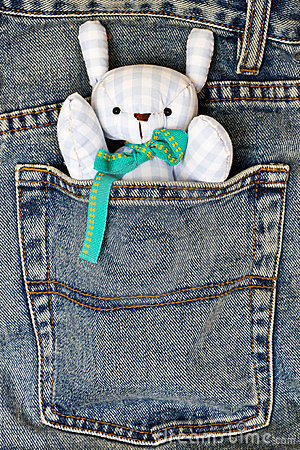 Doll in the pocket