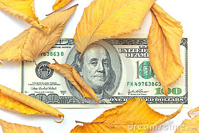 Dollar in autumn leafs