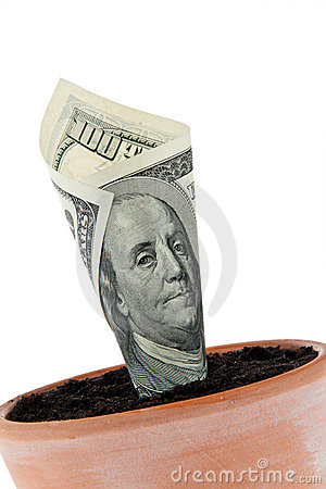 Free Dollar Bill In Flower Pot. Interest Rates, Growth. Royalty Free Stock Photo - 15110895