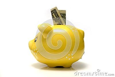 Dollar bill in piggy bank