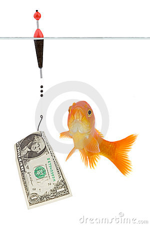 Dollar and goldfish
