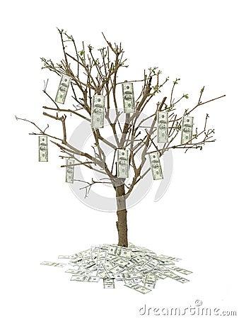 Dollar hundra en tree
