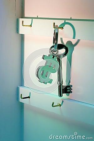 Dollar Symbol Keychain
